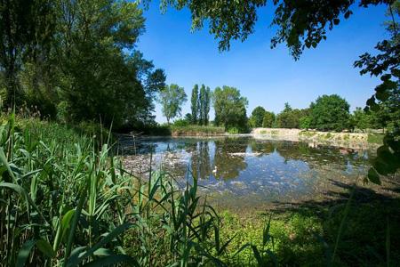 In canoa nel delta del po sport e turismo promozione - Portano acqua ai fiumi ...
